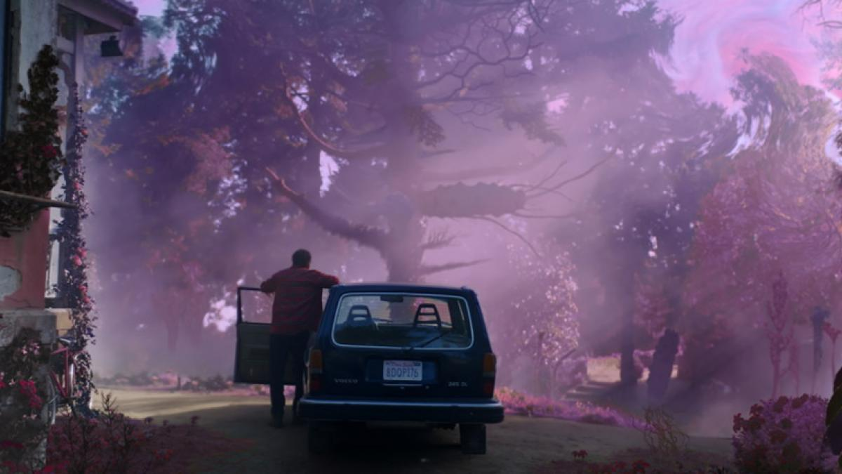 Nathan Gardner (Nicolas Cage) stands next to his car, gazing on the transformations that have afflicted his home and the surrounding forest.